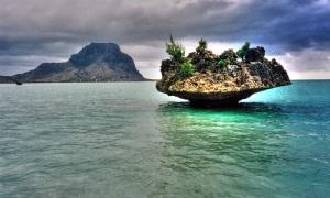 Mauritius Black River